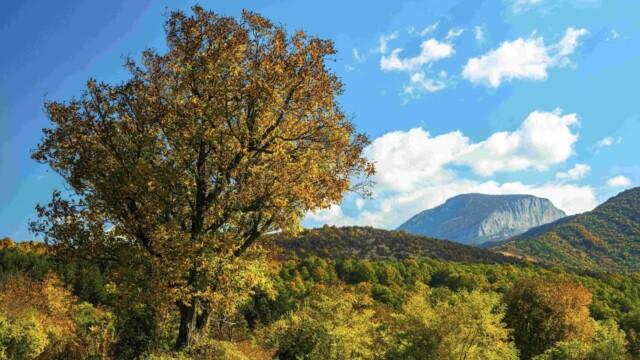 Mонтана – Oчарователно откритие -  Това е България