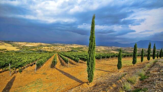 Винарска изба Рупел -  Това е България