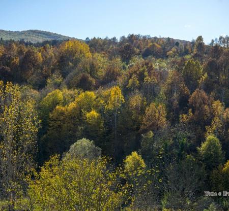 Стара планина над Правешка Лакавица -  Това е България