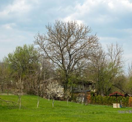 Село Джурово -  Това е България