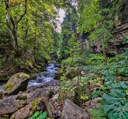 Резерват Северен Джендем -  Това е България