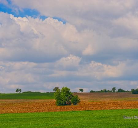 Севлиевското поле -  Това е България
