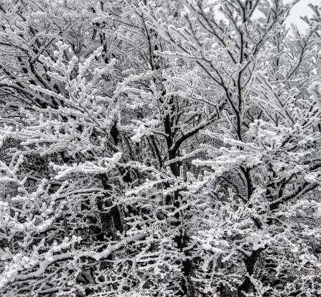Зима в Балкана -  Това е България