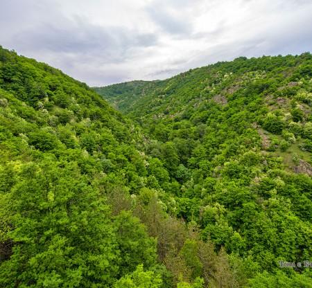Средна гора край хижа Каваклийка -  Това е България