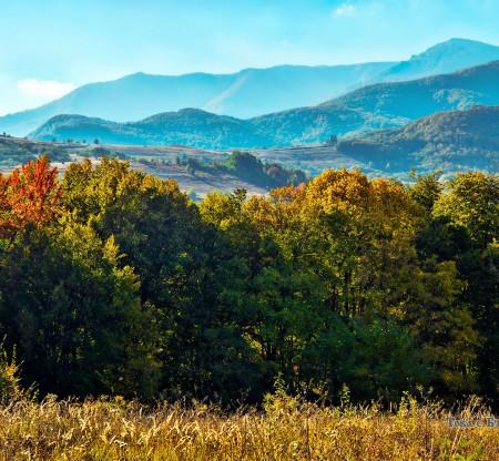 Стара планина край Вършец -  Това е България