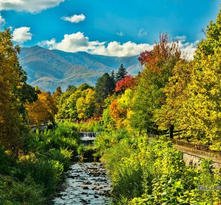 Река Ботуня – Вършец -  Това е България