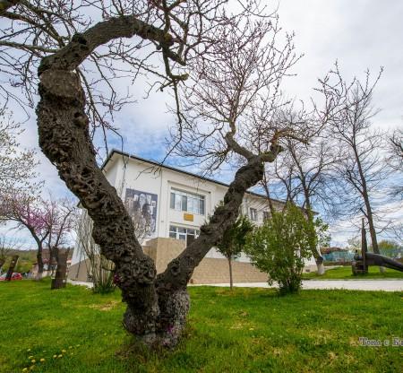 Музей на Толстоистката колония – Ясна поляна -  Това е България