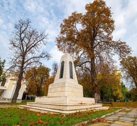 Крайдунавски парк, Видин -  Това е България