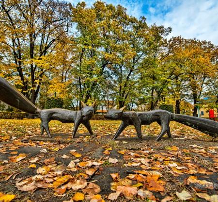 Двете лисички – Крайдунавски парк, Видин -  Това е България