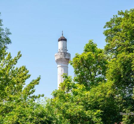 Джамията на Осман Пазвантоглу – Видин -  Това е България