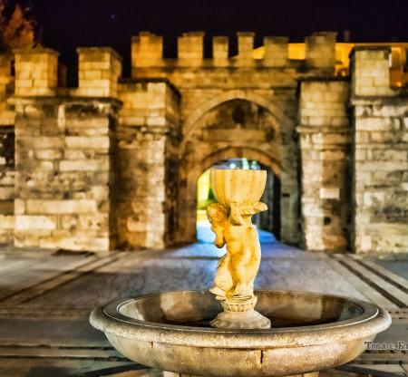 Стамбул капия, Видин -  Това е България