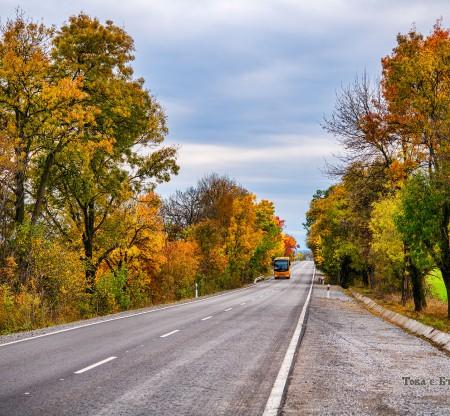 Път из Мизия -  Това е България