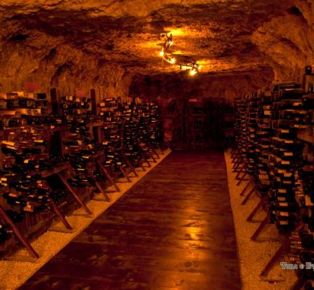 Музей на виното – Плевен -  Това е България