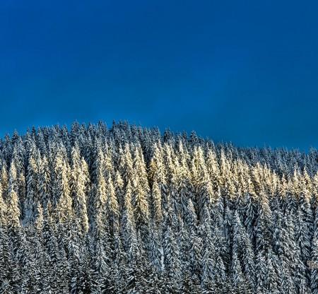 към връх Перелик -  Това е България