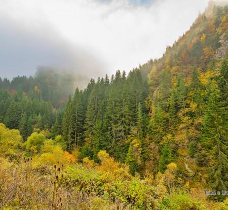 Родопска есен край Чокманово -  Това е България