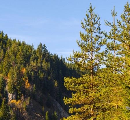 Родопска есен край Беслет -  Това е България