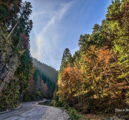 Родопска есен по пътя към Триград -  Това е България
