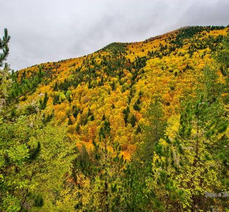 родопска есен край село Огняново -  Това е България