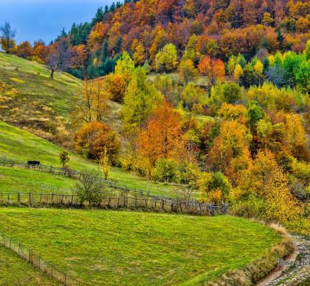 Поляни по поречието на река Арда -  Това е България