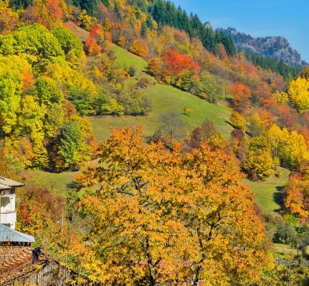 Поляни из родопска есен -  Това е България