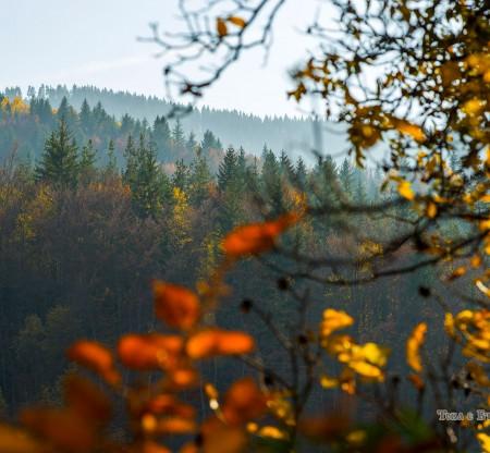 Есен край Мугла -  Това е България