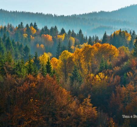 Есен в Родопите -  Това е България