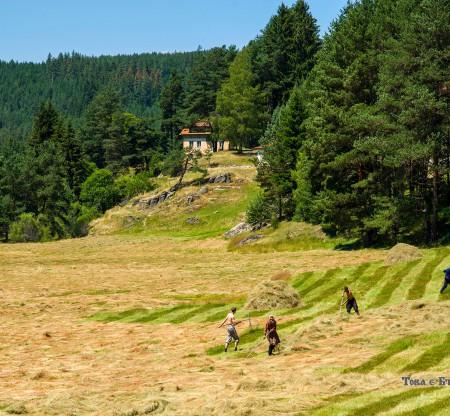 Из поляните на Беслет -  Това е България