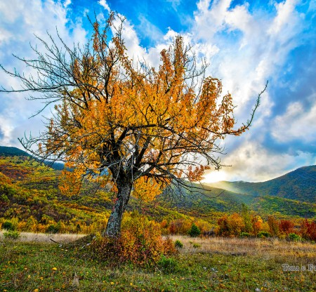 """Биосферен резерват """"Алиботуш"""" -  Това е България"""