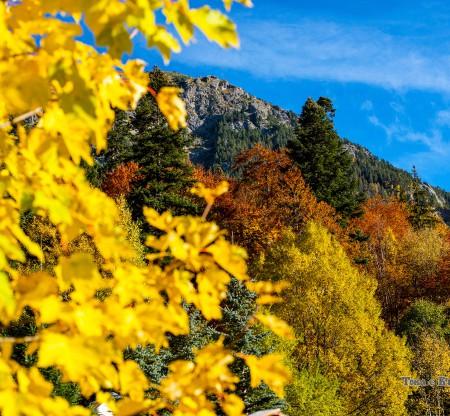 """Природен парк """"Рилски манастир"""" -  Това е България"""