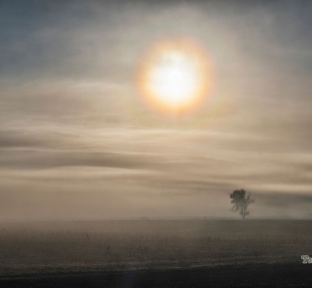 Изгрев из долината -  Това е България