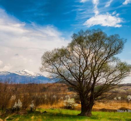 Есен в Пирин -  Това е България
