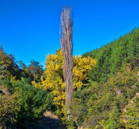 Огражден планина -  Това е България