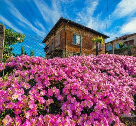 Селска къща из Симитли -  Това е България