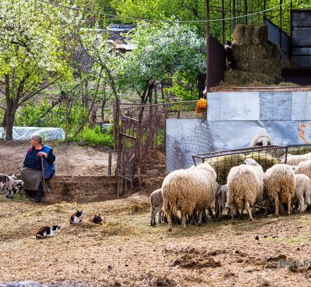 Къща в село Крупник -  Това е България