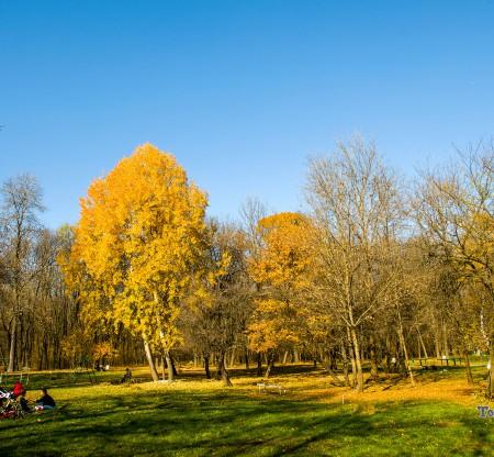 Южен парк – София -  Това е България