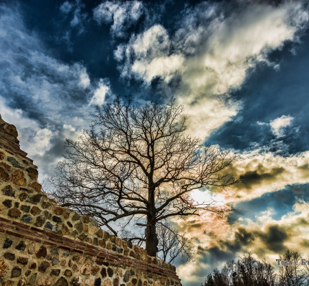 Цари Мали Град -  Това е България