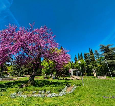 Парк Аязмото – Стара Загора -  Това е България